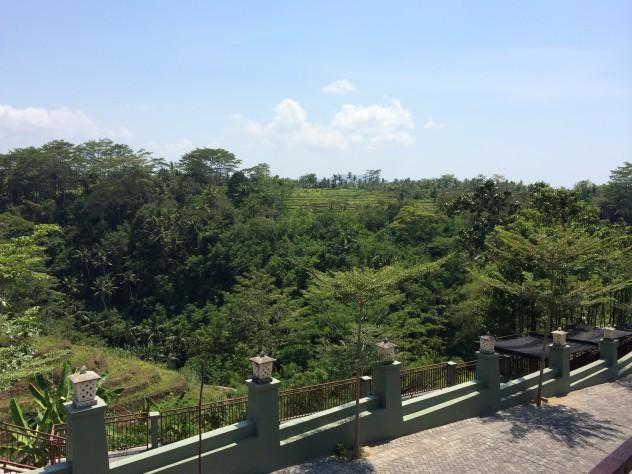 タマンヌサ景色